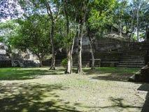 Vue aux ruines archéologiques de réservation de Xunantunich à Belize photos stock