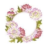 Vue avec des chrysanthèmes Illustration d'aquarelle d'aspiration de main Photographie stock libre de droits