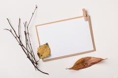 Vue avec des feuilles d'automne Photos stock