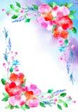 Vue avec des fleurs et des herbes frontière florale de pavots et tache aqueuse illustration de vecteur