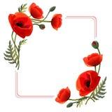 Vue avec des fleurs Pavots rouges Carte de voeux Images libres de droits