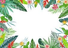 Vue avec des plantes tropicales et des fleurs d'aquarelle illustration libre de droits
