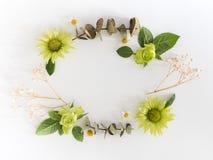 Vue avec des roses, des fleurs vertes et des feuilles sur le fond blanc Image libre de droits