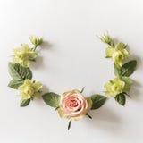 Vue avec des roses, des fleurs vertes et des feuilles sur le fond blanc Images stock