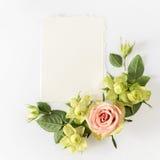 Vue avec des roses, des fleurs vertes et des feuilles sur le fond blanc Photographie stock libre de droits