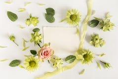 Vue avec des roses, des fleurs vertes et des feuilles sur le fond blanc Photo stock