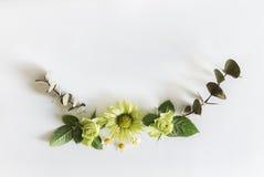 Vue avec des roses, des fleurs vertes et des feuilles sur le fond blanc Photos stock