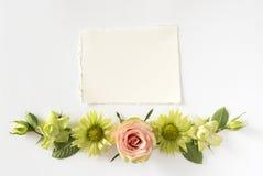 Vue avec des roses, des fleurs vertes et des feuilles sur le fond blanc Photo libre de droits