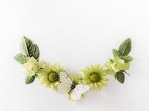 Vue avec des roses, feuilles de fleurs et butterflay verts sur le fond blanc Images libres de droits