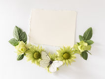 Vue avec des roses, feuilles de fleurs et butterflay verts sur le fond blanc Photographie stock