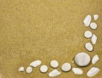 Vue avec des seashells Images stock