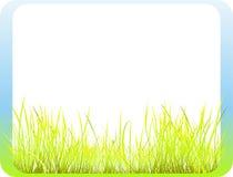 Vue avec l'herbe Images libres de droits