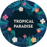 Vue avec les feuilles tropicales de jungle Image stock