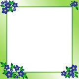 Vue avec les fleurs bleues illustration de vecteur