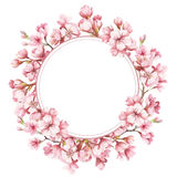 Vue avec les fleurs de cerisier Illustration d'aquarelle Image libre de droits
