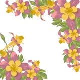 Vue avec les fleurs de floraison de blanc Photo stock