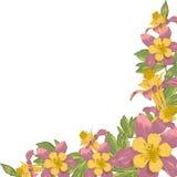 Vue avec les fleurs de floraison de blanc Photographie stock libre de droits