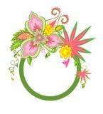 Vue avec les fleurs et l'oiseau exotiques Photographie stock