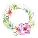 Vue avec les fleurs et les feuilles tropicales Illustration d'aquarelle d'aspiration de main Photos libres de droits