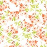 Vue avec les fleurs roses Illustration de Vecteur