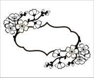 Vue avec une branche des fleurs de cerisier Photographie stock libre de droits