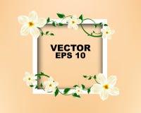 Vue blanche avec la conception de calibre de fleurs blanches Images stock