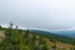 Vue brumeuse des montagnes de Brocken, Allemagne Image libre de droits