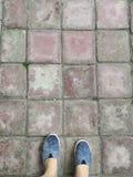 Vue courbe de point personnel des chaussures grises humides sur le plancher rouge de brique de squre photos libres de droits
