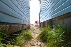 Vue détaillée d'herbe entre les huttes de plage Photographie stock libre de droits
