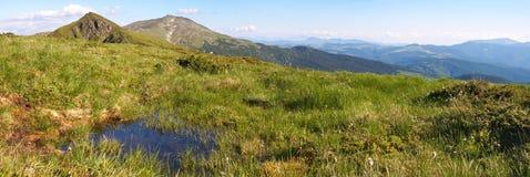 vue d'été de montagne Photo stock