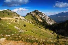 Vue d'été de paysage de montagnes de forêt Photo libre de droits