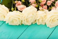 Vue d'été des roses colorées Vue supérieure et foyer sélectif Photographie stock libre de droits