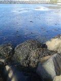 Vue d'île de Rathlin Photographie stock