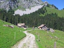 Vue d'Alpes Images libres de droits