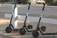 Vue d'angle faible de trois scooters d'OISEAU contre la barrière blanche Images stock