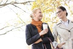 Vue d'angle faible des femmes d'affaires de sourire conversant au parc Photo stock