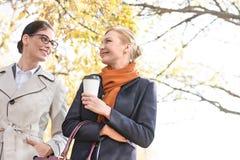 Vue d'angle faible des femmes d'affaires de sourire conversant au parc Image stock