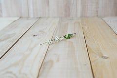 Vue d'angle sur le spirea de floraison de branche de fond en bois Photos stock