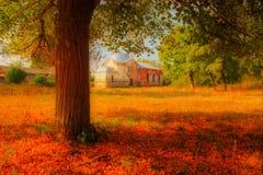 Vue d'arbre sur l'église photos libres de droits