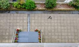 Vue d'Ariel d'un secteur vide de patio avec un chat noir et blanc Photographie stock