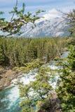 Vue d'automne d'arc et de rivière d'arc Photos libres de droits