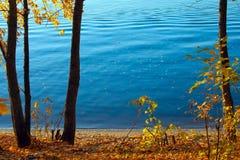Vue d'automne de belles feuilles colorées des arbres et de l'eau de lac image stock