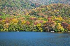 Vue d'automne de lac Photos stock