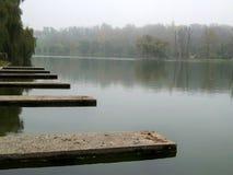 Vue d'automne en parc avec le brouillard Images stock