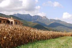 Vue d'ensemble de Cornella de Terri Vall de n Bas Image stock