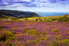 Vue d'Exmoor Photos stock