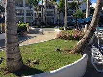 Vue d'hôtel par des palmiers image stock