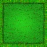 Vue d'herbe Image libre de droits