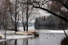 Vue d'hiver Image libre de droits