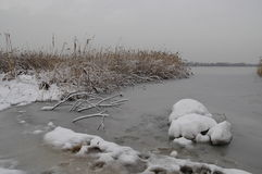 Vue d'hiver de lac de côte de Pogoria image libre de droits
